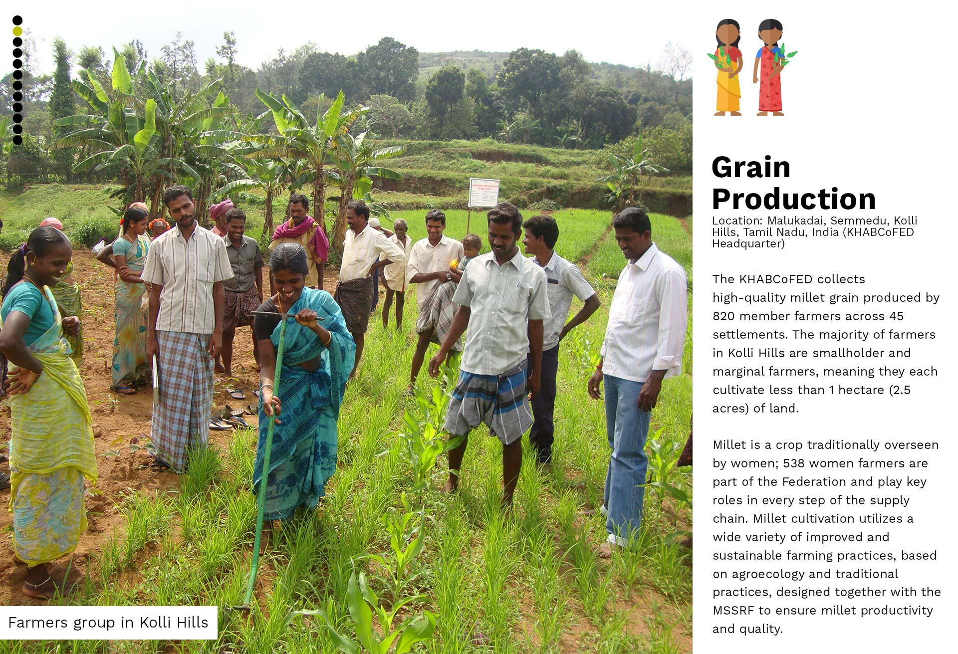 02-Grain Production