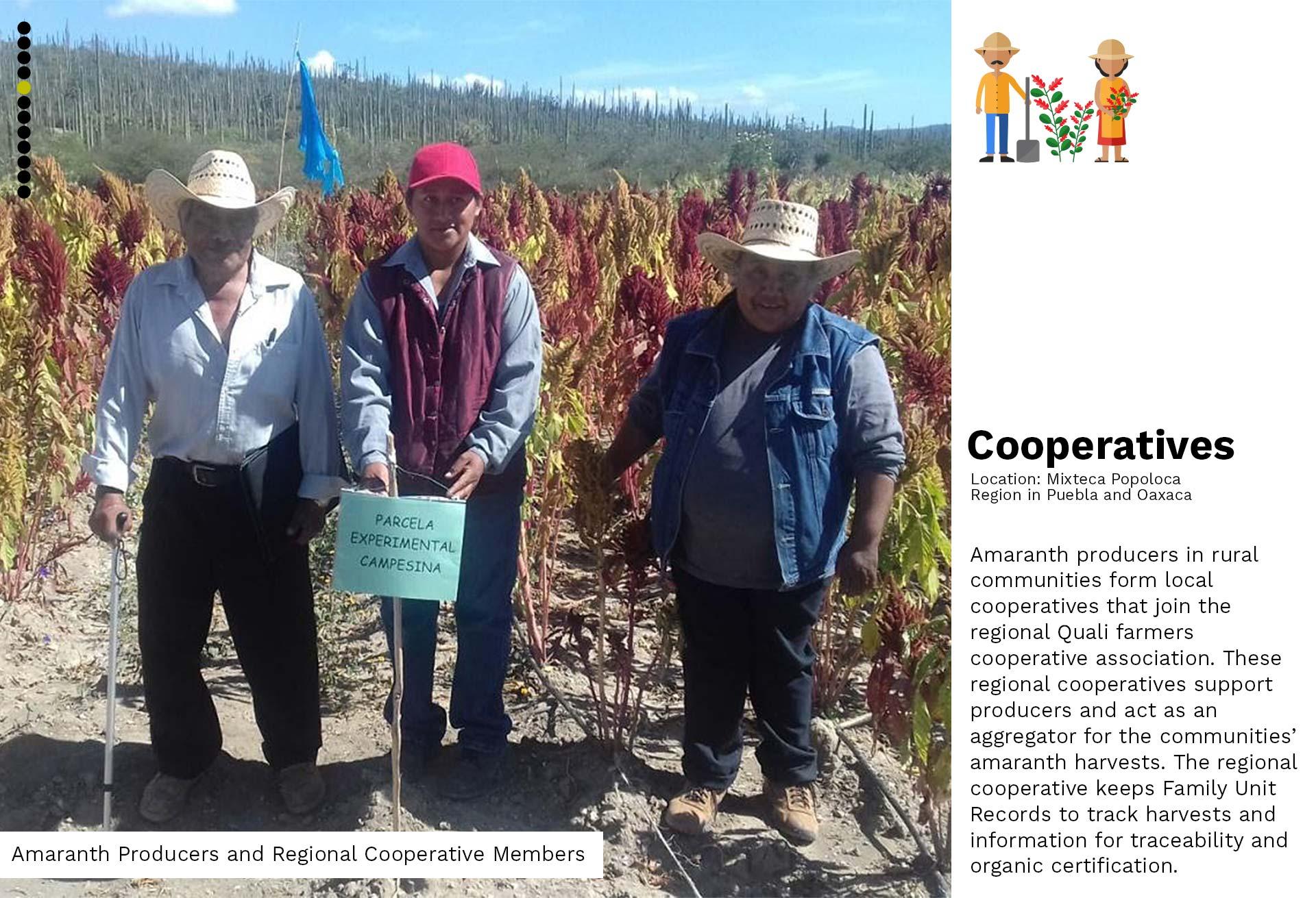 03a-Cooperatives